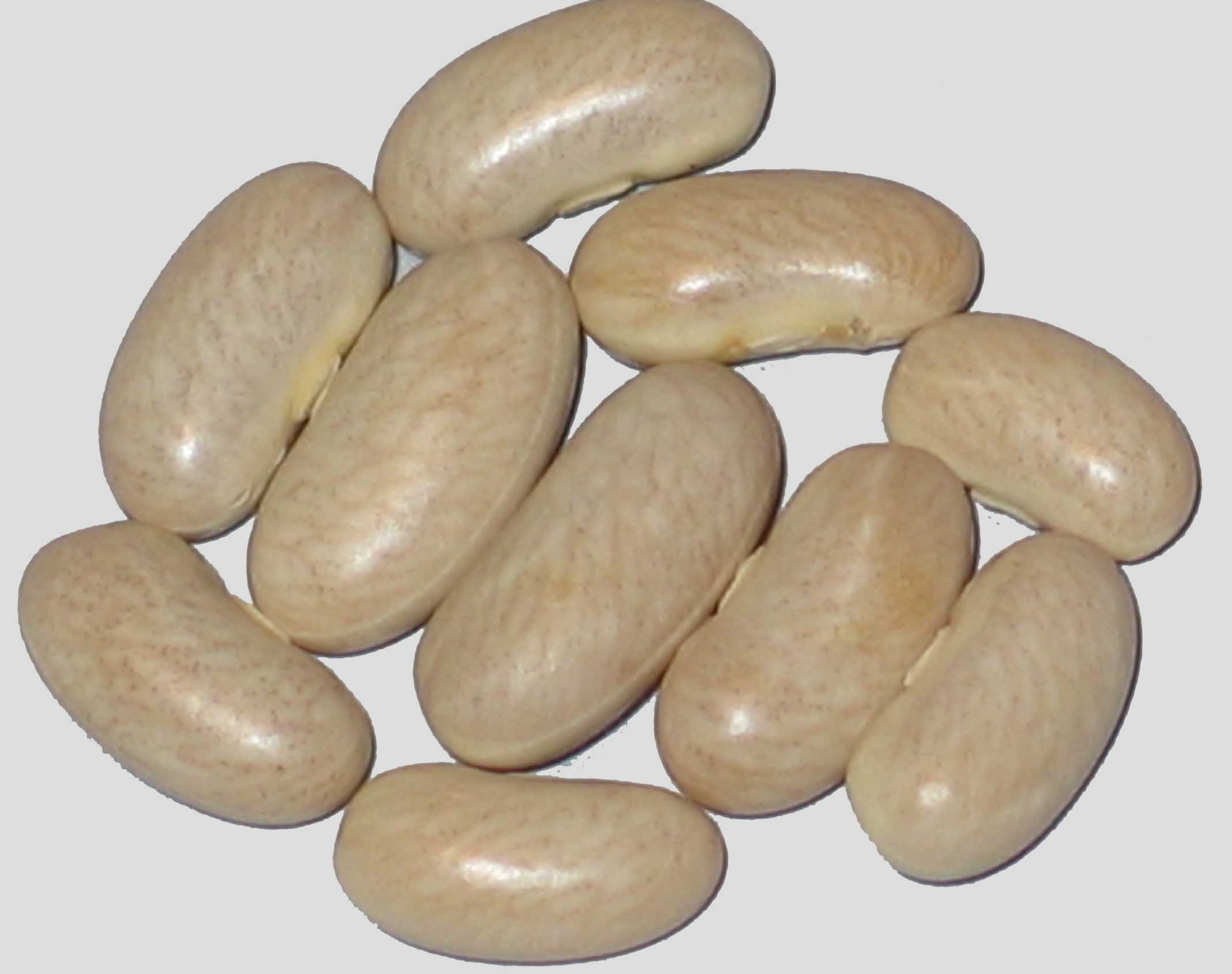 image of College Supreme beans